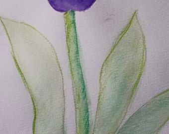 Purple Watercolor Pencil Tulip