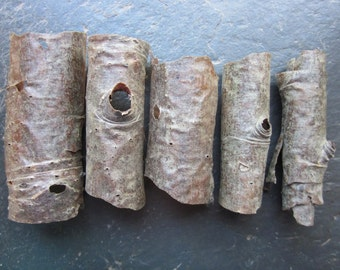 Genuine Rowan Bark Sheets for Use in Your Magic or Art.