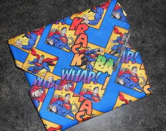 Reusable Eco Friendly Sandwich Wrap with Superman in Blue with fighting words