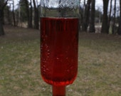 Embossed bottle Hummingbird Garden wine bottle Hummingbird feeder