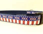 American Dog Collar, USA, 1 inch wide, adjustable, quick release, metal buckle, martingale, chain, hybrid, nylon, soft