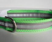 Grey Reflective Safety Dog Collar
