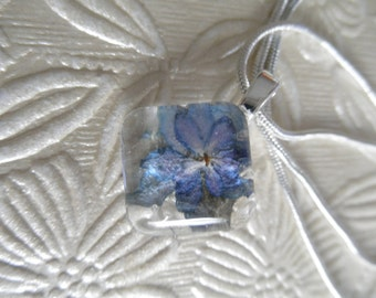 Colorado Sky Blue Ombre Double Hydrangea Pressed Flower Glass Square Domed Pendant-Symbolizes Understanding