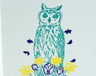 SALE - Letterpress Spring Owl card - 60% off