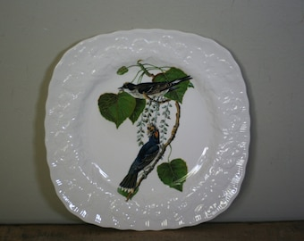 vintage alfred meakin birds of america plate #79 kingbird made in england