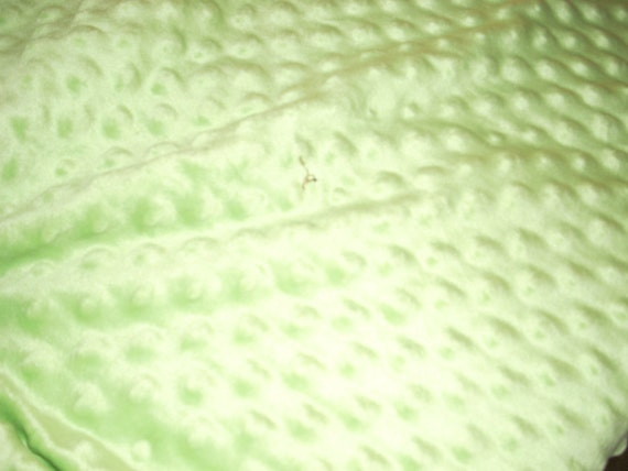 Minky Dimple Dot Fabric Light Apple Green Soft And Comfy