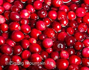 Cranberry art for kitchen.  Fruit wall art or kitchen wall art from food photography.  Fine art print for kitchen decor or wall art.
