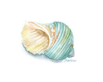 Green Turbo Seashell Watercolor Print - 11 x 14 - Beach Art Ocean Shell Summer Beach Fine Art Reproduction