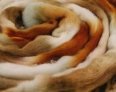 Polwarth Wool Top Hand Dyed Roving Spinning Fiber - Copper and Quartz 4.0 oz