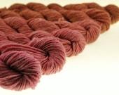Mini-Skeins Merino Bamboo Nylon Sock Yarn Gradient Dyed - Plum Panda Sock - Cognac and Cabernet
