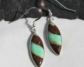 Chocolate Mint - Beautiful Natural Chyroprase Sterling Silver Earrings