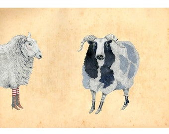 Sheep art giclee print 8x11