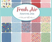 """ON SALE Fresh Air American Jane  Moda Quilt Fabric Charm Pack 42 squares 5""""x 5"""""""