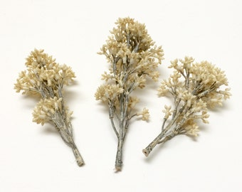 Artificial Flowers - Three ANTIQUE CREAM Skimmia Flower Clusters - Flower Crowns, Wedding Crowns, Halos