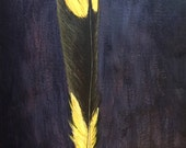 Yellow and Brown Bird Feather