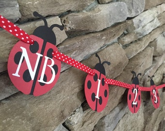 Ladybug Theme First Year Monthly Photo Banner, nb-12 months, Baby's 1st Year Monthly Photo Banner, 1st Birthday Party Banner
