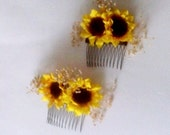 Sunflower combs -set of 2- mini silk sunflowers dried babys breath rustic chic barn weddings  flower girl hairpiece Bridal party Accessories