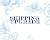 Priority 2-3 day Shipping Upgrade