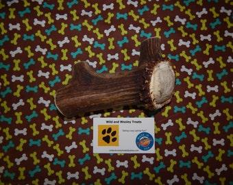 "Organic Jumbo Elk Antler Dog Chew ""Made in Montana"" (Lot W47)"
