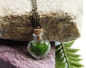 "Terrarium Necklace on 30"" Brass Antique Looking Chain, Terrarium, Gift for Her, Living Jewelry, Moss Jewelry,Birthday Present"