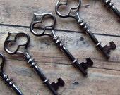 Zafra Skeleton Key in Black/Gunmetal - Set of 10