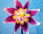 Purple Pansy Flower Pinwheel