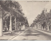 Avenue of Palms, Fort Myers, Florida, Scenic Black and White Photograph Vintage Postcard Conoco Station Advertisement from 1940s