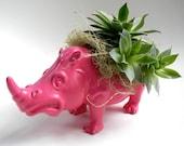 Succulent Planter Centerpiece -  Berry Pink Rhinoceros Animal Planter - Modern Valentine