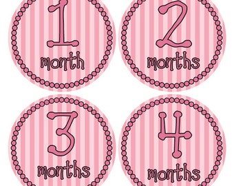 Pink Baby Girl Stickers Monthly Age Stickers Baby Growth Stickers Infant Stickers Baby Month Stickers Pink Photo Props 1-12 Months (414)