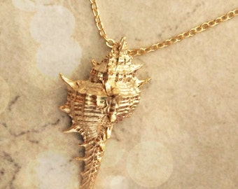 Gold Shell US SHIPS FREE Necklace Gold Necklace Bridesmaid Gift, Sea Shell Jewelry, Mothers Gift Bridesmaid Jewelry Gift Limonbijoux