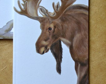 Moose Notebook - Woodland Animal - Eco and Recycled - Compact Notebook - Woodland Jotter