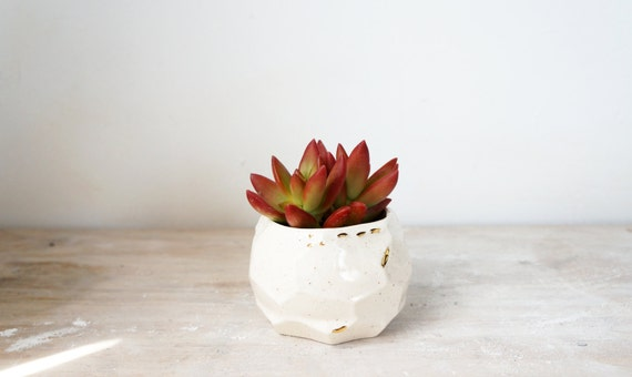SALE speckled facet planter with gold accents