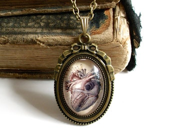 Anatomical Heart Necklace - Antique Anatomy Print Pendant in Bronze