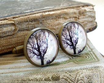 The Dawn Tree Cufflinks / Cuff Links - Tree Silhouette Cufflinks - Antique Print Collage Cuff Links in Brass