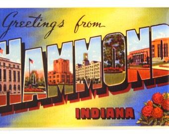 Greetings from Hammond, Indiana Fridge Magnet