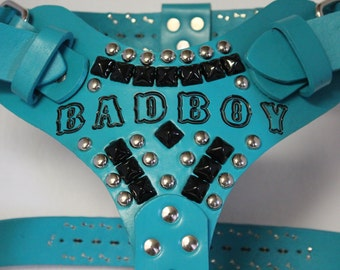 Turquoise Large Leather Dog Harness with Black Pyramids with Name