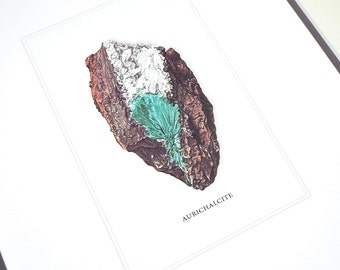 Aurichalcite Mineral Specimen Archival Print on Watercolor Paper