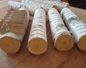 Whole log BIRCH CARD HOLDER all natural fresh organic accent for summer weddings and your perfect party