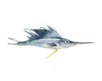 Watercolor Baby Marlin, Baby Marlin Print, Game Fish Print, Print for Him