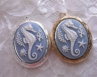 Sea Life Seahorse Blue White Large Photo Locket Necklace with free chain