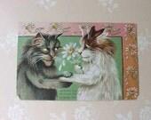 "Adorable Edwardian Era Postcard-Trust Between Lovers-Tuck's ""Humurous Cats"" Series"