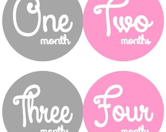 Baby Monthly Milestone Growth Stickers Pink Grey Nursery Theme Baby Shower Gift New Baby Photo Prop in Your Choice of Colors