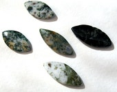 Moss Agate Marquise Beads White Green