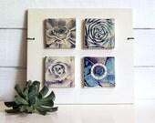 Rotor.  Polaroid Transfers Printed on Fired Clay.  Spiral Succulents With Propeller.  Layers of Clay and Photography.
