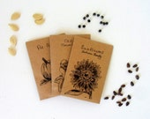 "Custom Illustrated Seed Packets for Homegrown Seeds Fall Autumn Garden Supplies Set of Five 2.75""x4"" (7x10cm)"