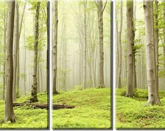 Framed Huge 3-Panel Misty Spring Forest Canvas Art Print - Ready to Hang