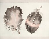 Feather painting. Watercolor painting original. Gray pale pink feather painted. Small watercolors 7,5/11.Art painting. Feather illustration.