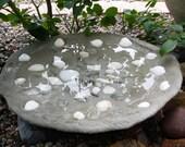 Tide Pool Bird Bath, Custom Handcrafted, Clear Tumbled Glass, Assorted Sea Shells