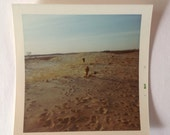 Vintage Kodak Color Photo Dogs Beach Sand