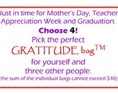 GRATITUDE bag Party Pack 4, Family Fun Pack,  Teacher Appreciation Recovery, Mother's Day, Graduation, 12 step, AA, NA, God box, journal,